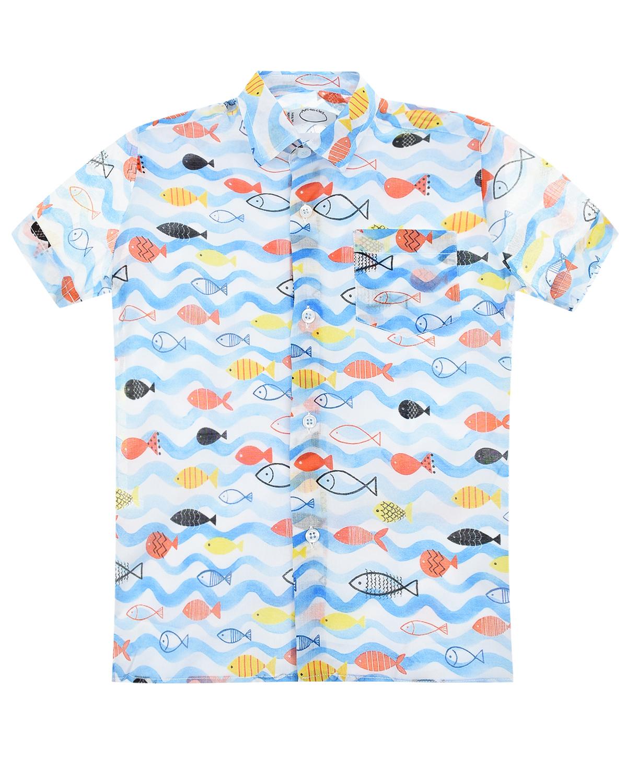 """Рубашка с принтом """"Морские обитатели"""" Arc-en-ciel детская фото"""