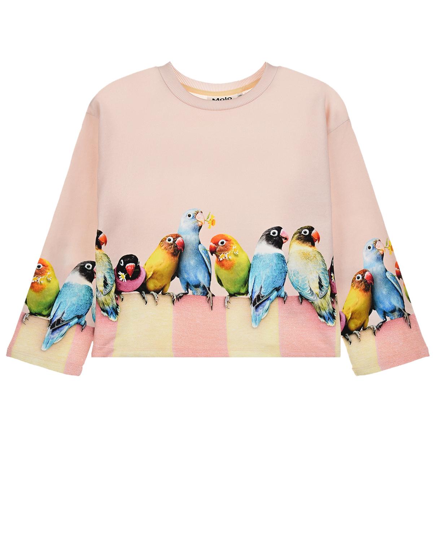 Купить Бежевая толстовка Mikko Love Birds Big Molo детская, Бежевый, 100% хлопок
