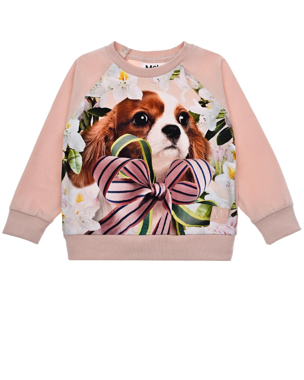 Купить Свитшот с принтом Pretty Pup Molo детский, Розовый, 95%хлопок+5%эластан