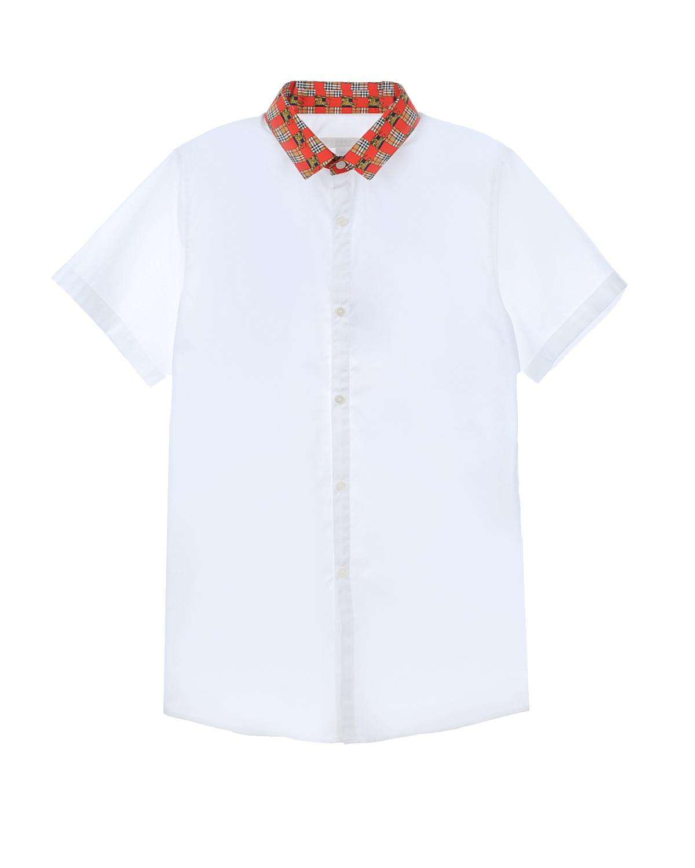 рубашка burberry для мальчика
