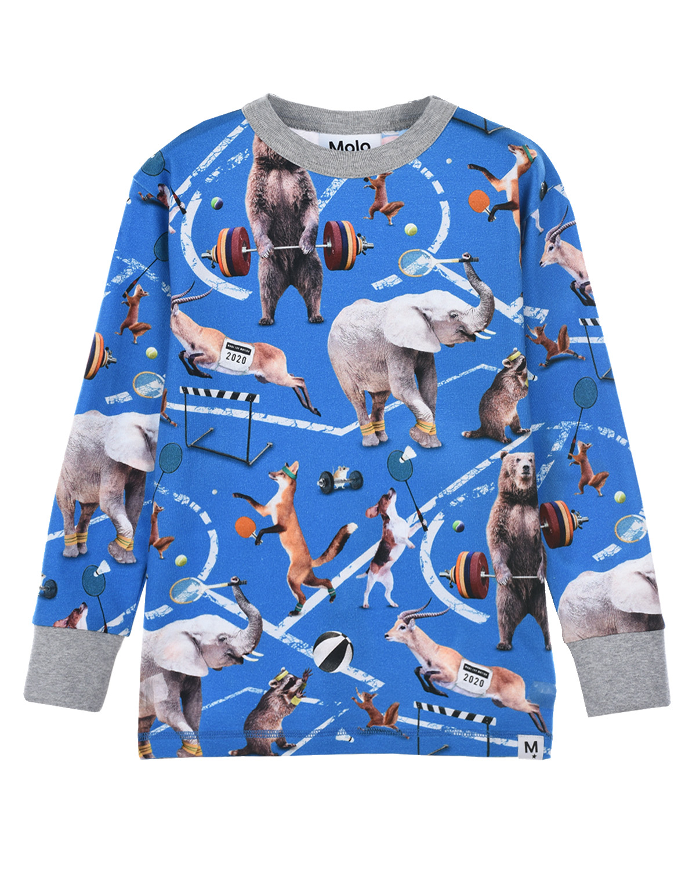 Купить Синяя толстовка Rill Athletic Animals Molo детская, Синий, 95%хлопок+5%эластан
